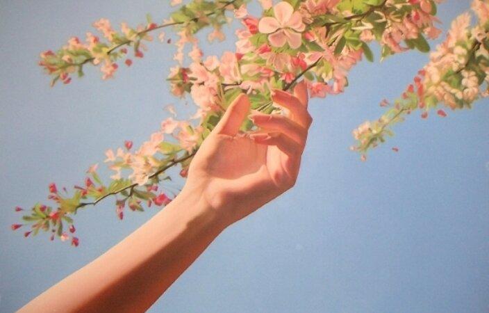Mustafa Hulusi, Untitled (Cherry Blossom and Hand), 2005