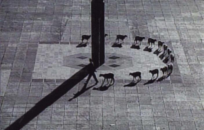 Francis Alÿs, Cuentos Patrioticos (Patriotic Tales), 1997 (still)