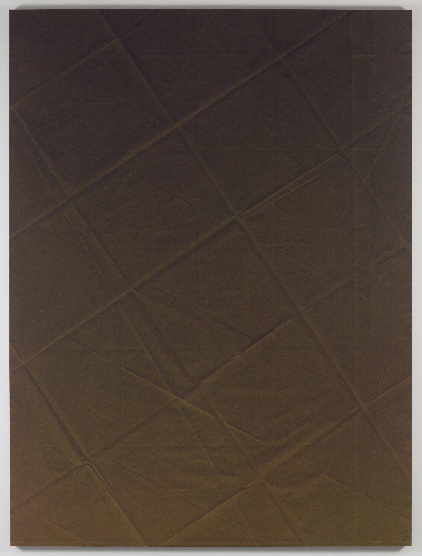 Tauba Auerbach, Untitled (Fold), 2010