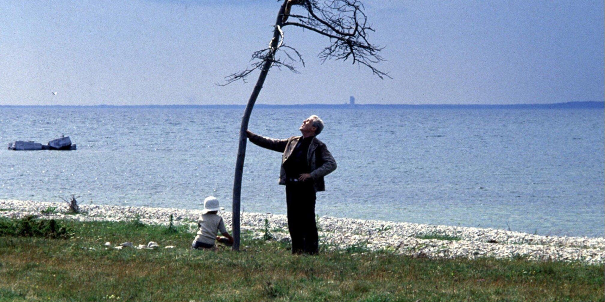 Andrei Tarkovsky, The Sacrifice, 1986 (still)