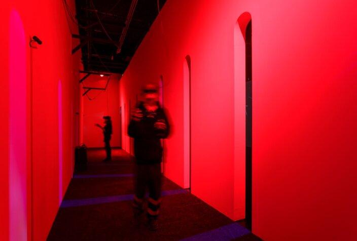 Rachel Rossin: Stalking the Trace