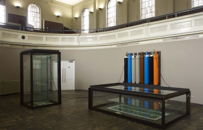 Damien Hirst, Sometimes I Avoid People 1991, installation view, Systematic, 2010 at Zabludowicz Collection, London. Photo: Stephen White