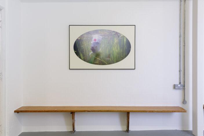 Zabludowicz Collection Invites: Andrew Munks
