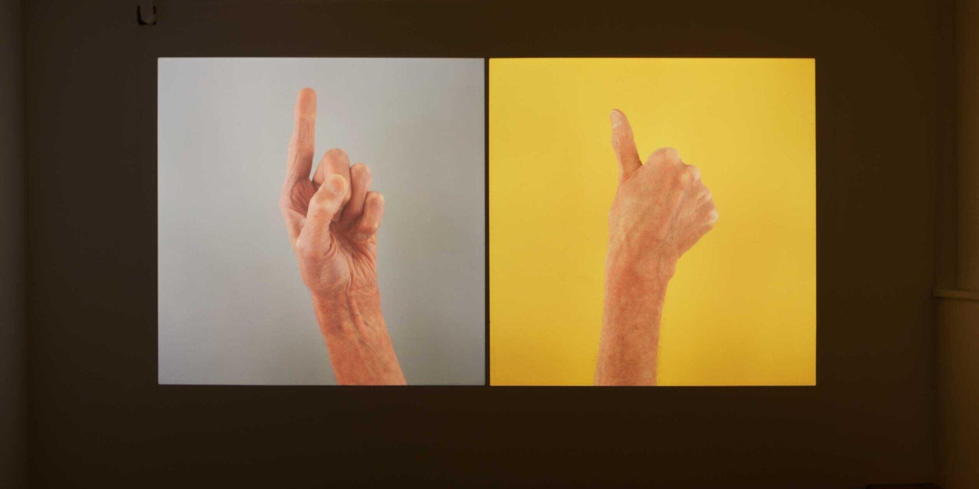 Zabludowicz Collection Invites: Stuart Whipps
