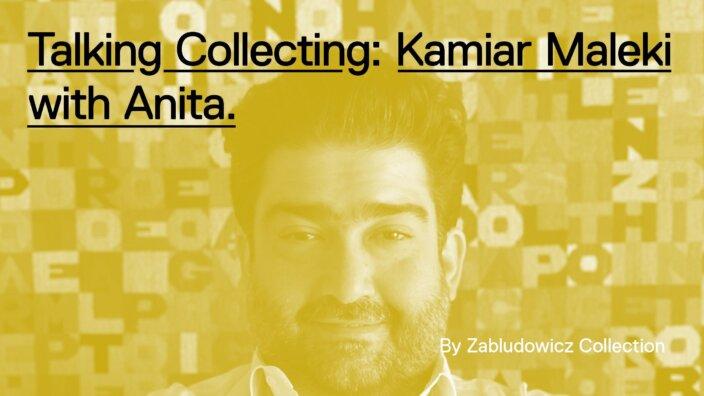 Talking Collecting: Kamiar Maleki with Anita